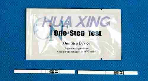 抗人血红蛋白(Hb)检测试剂条