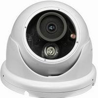 阵列红外半球摄像机尽在雷视安防科技有限公司