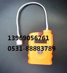 手持式氢气(H2)泄露检测仪PPM