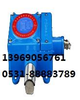 乙炔检测报警器RBK-6000