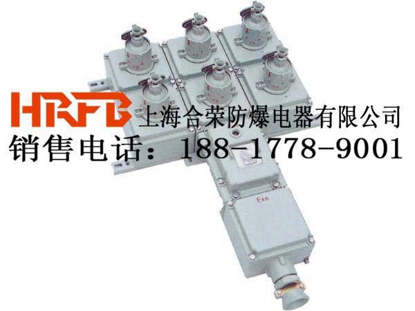 高压环境下专用防爆检修电源插座箱