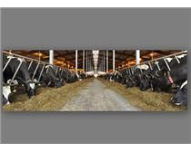 探感科技低频RFID畜牧养殖管理